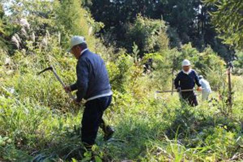 南陽「草木の森」平成28年度秋期イベント