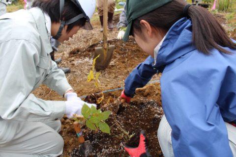 南陽「草木の森」平成29年度秋季イベント