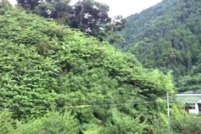 タフグリーン工法