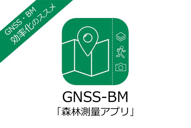 GNSS‐BM